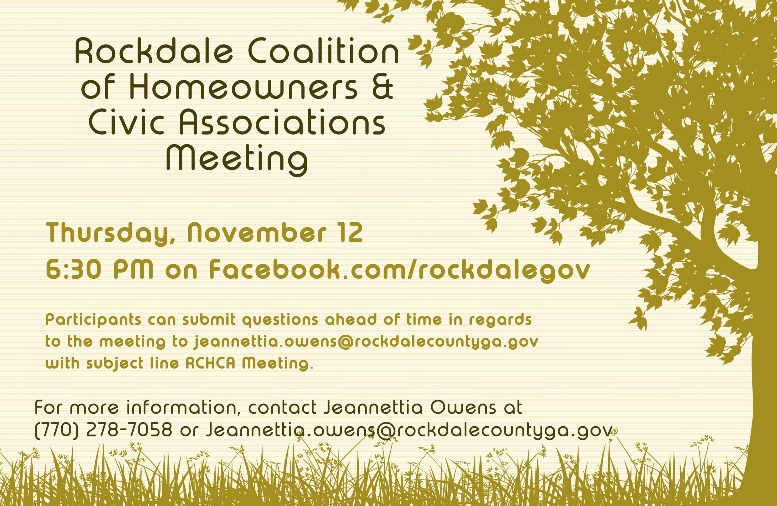 Virtual Rockdale Coalition of Homeowners and Civic Associations Meeting @ Rockdale County Official Facebook Page